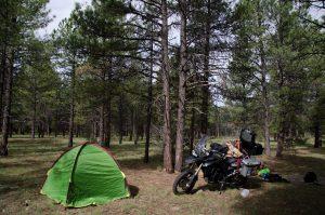 Free camping en Estados Unidos